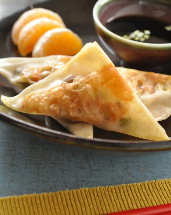 homemade-chinese-dumplings